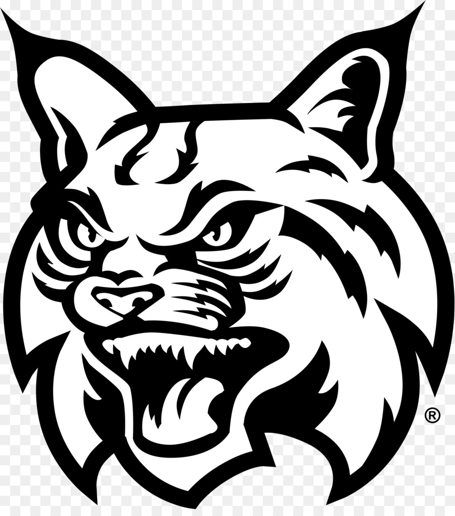 Bobcat Face Drawing.
