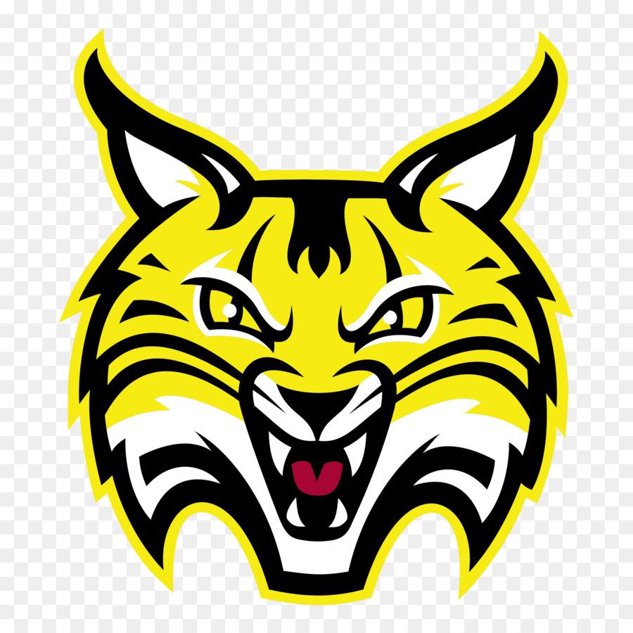 Tiger Cartoontransparent png image & clipart free download.
