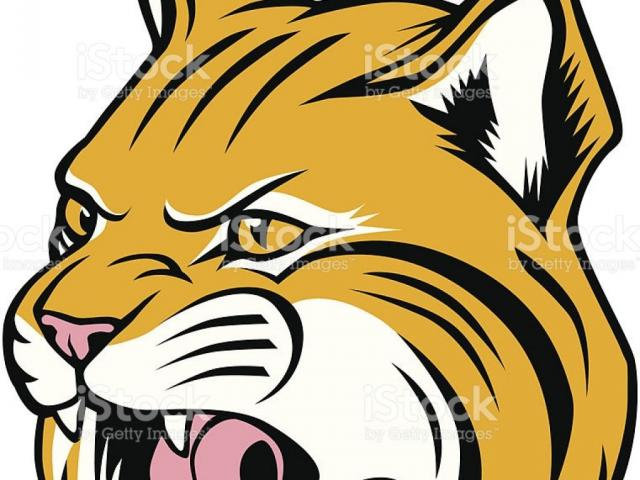 Free Bobcat Clipart, Download Free Clip Art on Owips.com.
