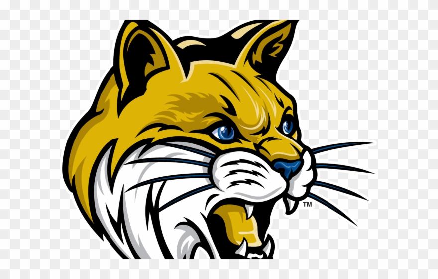 Cougar Clipart Bobcat.