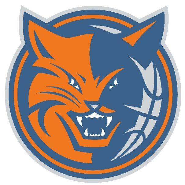 Pin on Charlotte Bobcats.