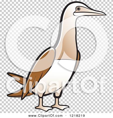Clipart of a Bobo Booby Bird.