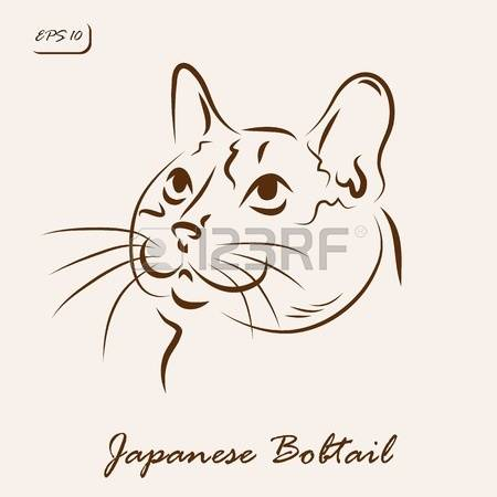 149 Bobtail Stock Vector Illustration And Royalty Free Bobtail Clipart.