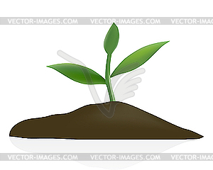 Boden clipart 7 » Clipart Station.