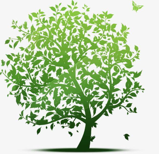 Cartoon Bodhi Tree Material PNG, Clipart, Big, Big Tree.