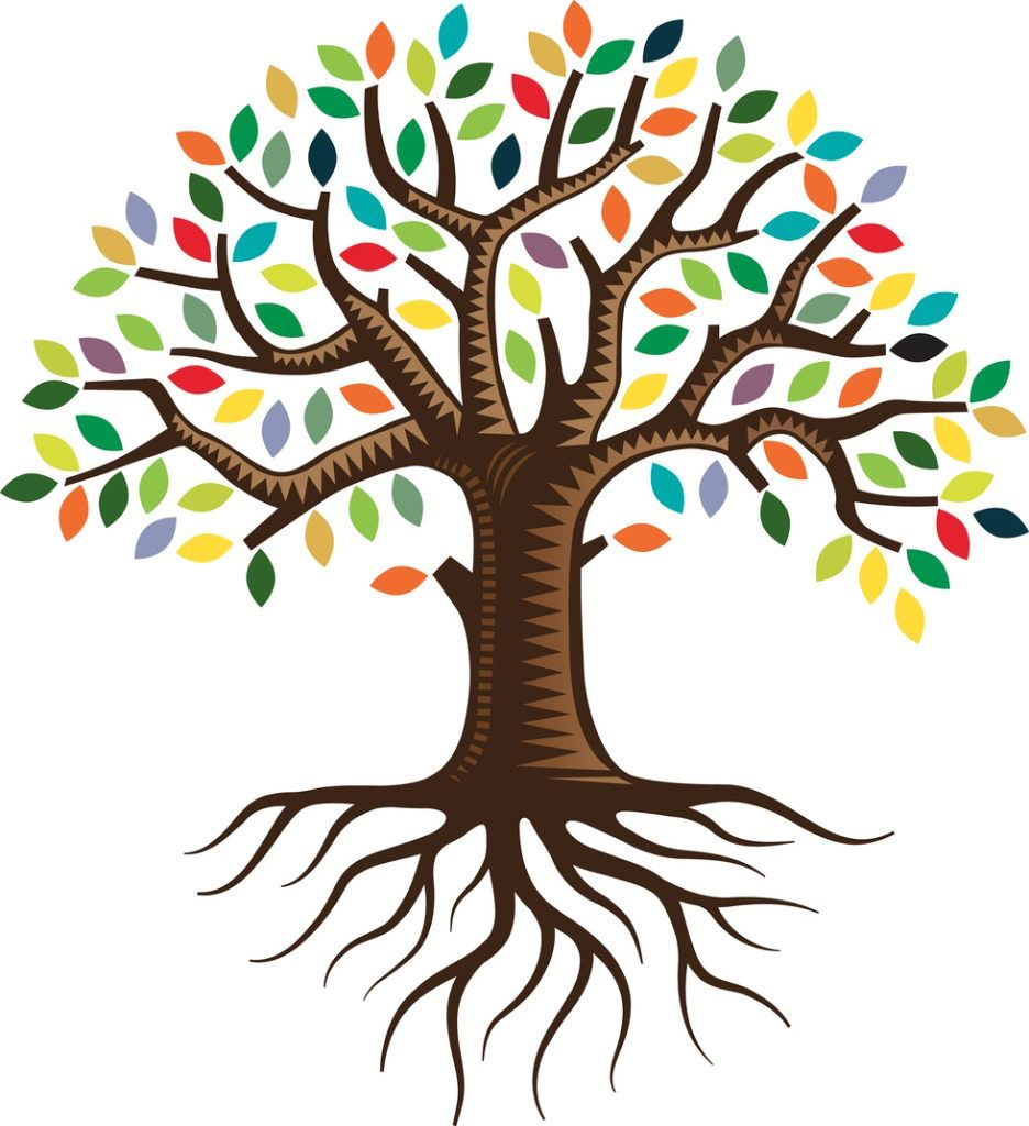 Image result for tree system.