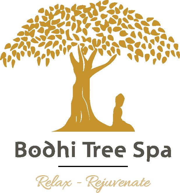 Bodhi tree png » PNG Image.