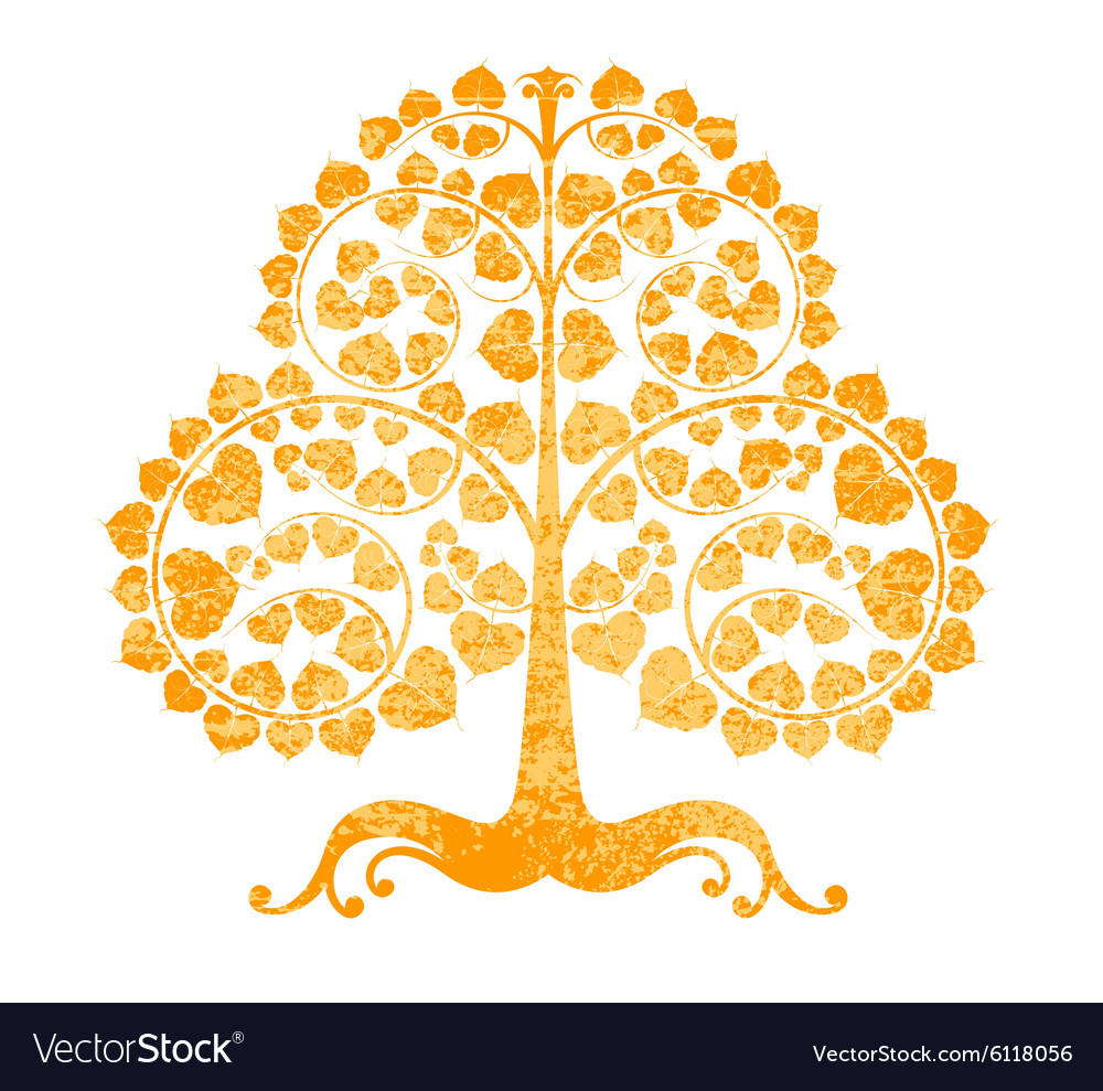 Bodhi tree on a white background.