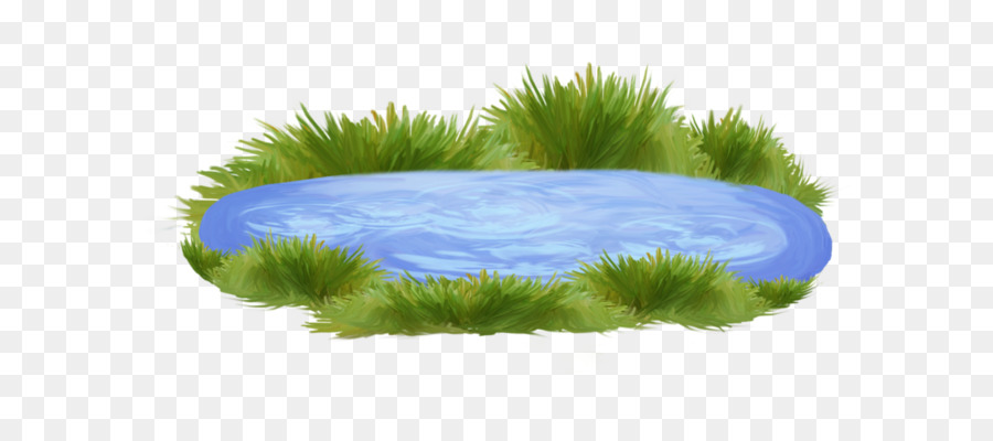 Pond Cartoon png download.