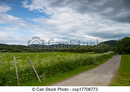 Picture of Grassland and road near Bodo, Norway, horizontal shot.