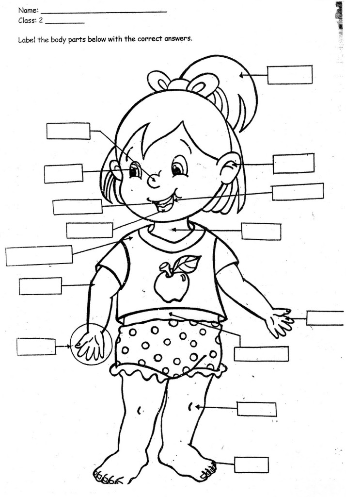 My Body Clipart For Kids Black And White.
