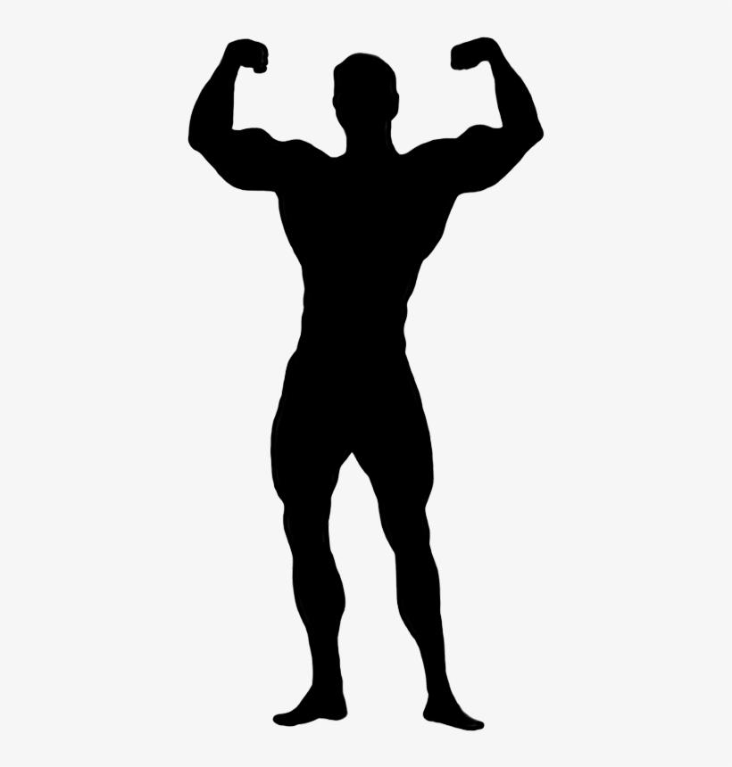 Female Bodybuilding Clip Art.
