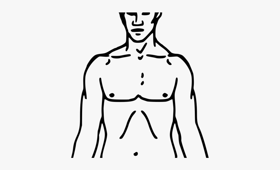 Chest Clipart Blank Body.