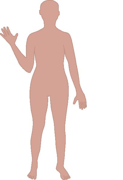 Person outline body outline clip art at vector clip art.