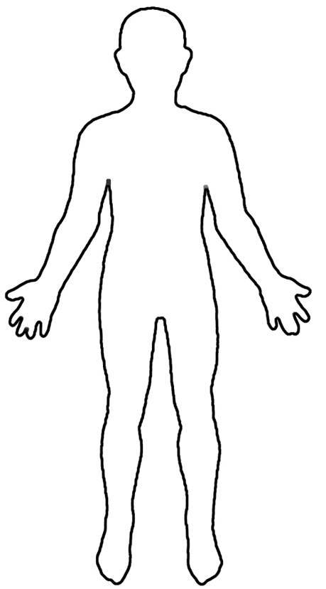 Body clip art.