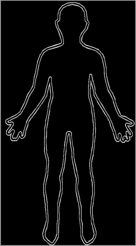 Free Human Body Clipart.