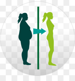 Body Composition PNG and Body Composition Transparent.