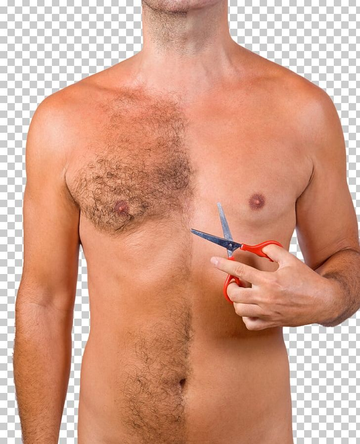 Chest Hair Hair Transplantation Body Hair Follicular Unit.