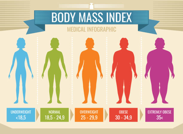 Top 60 Body Mass Index Clip Art, Vector Graphics and Illustrations.