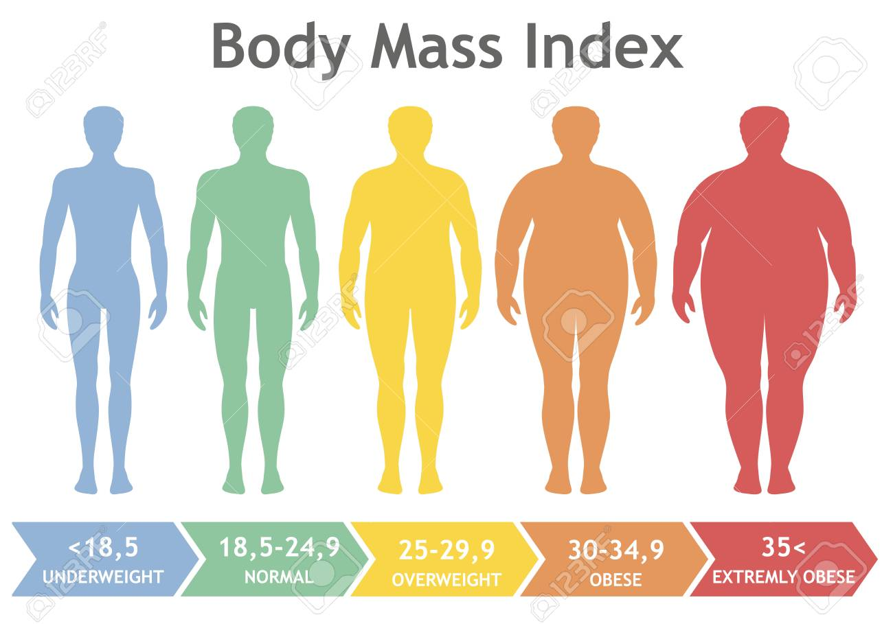 Body mass index vector illustration from underweight to extremely...