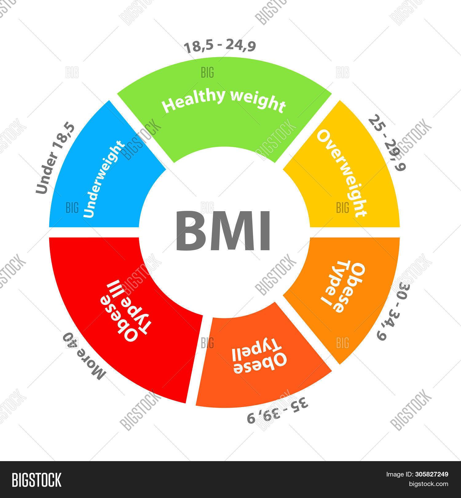 BMI Body Mass Index Image & Photo (Free Trial).
