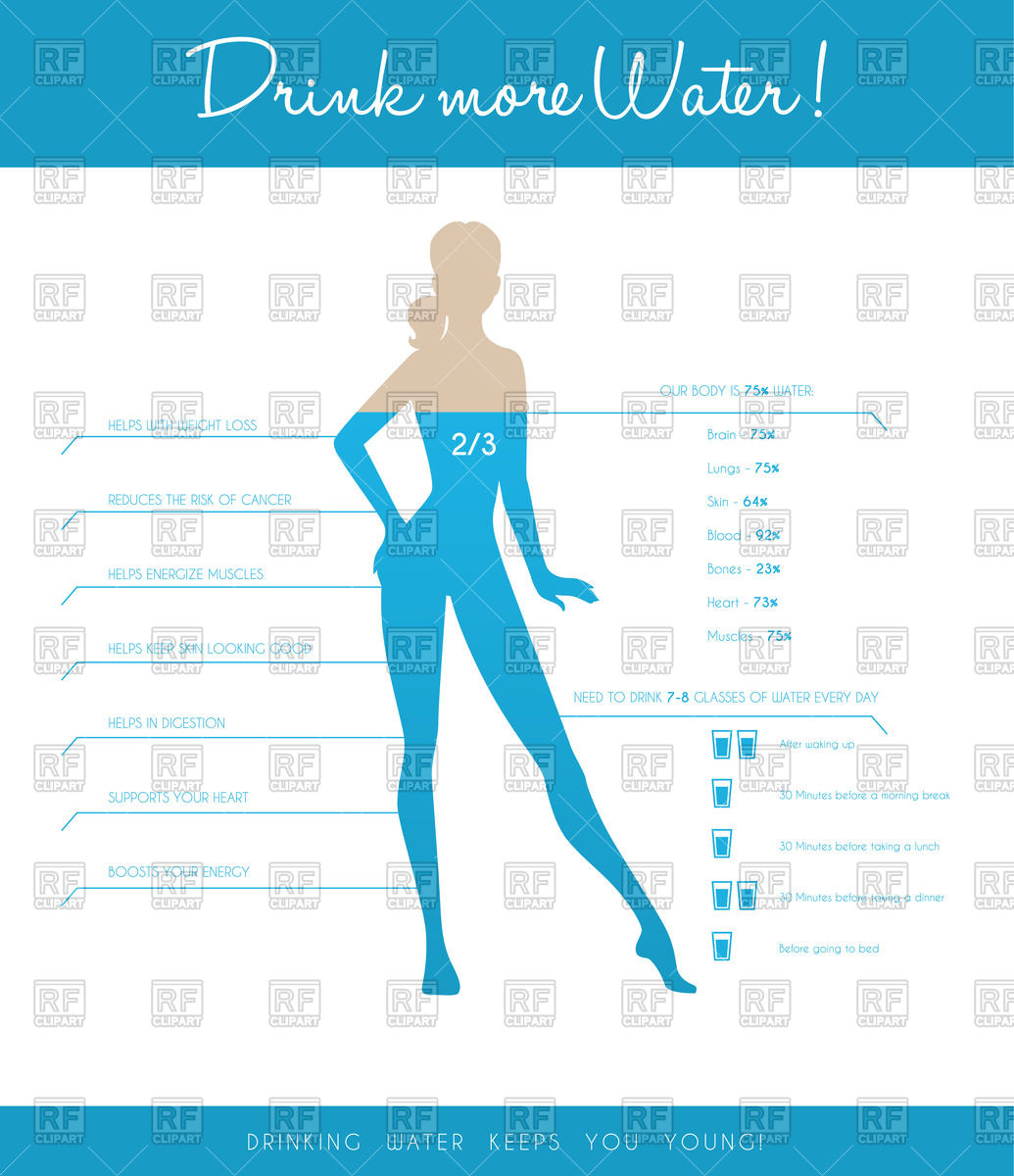 Bodies of water vector clipart.