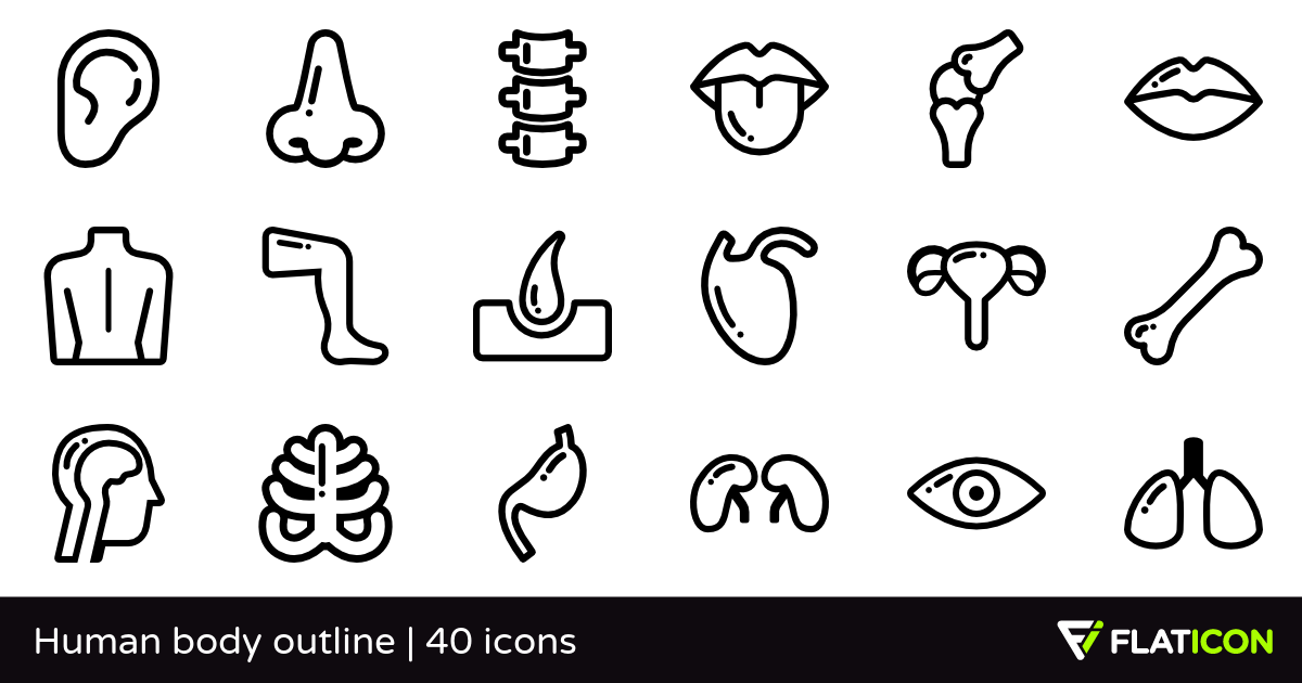 Human body outline 40 free icons (SVG, EPS, PSD, PNG files).