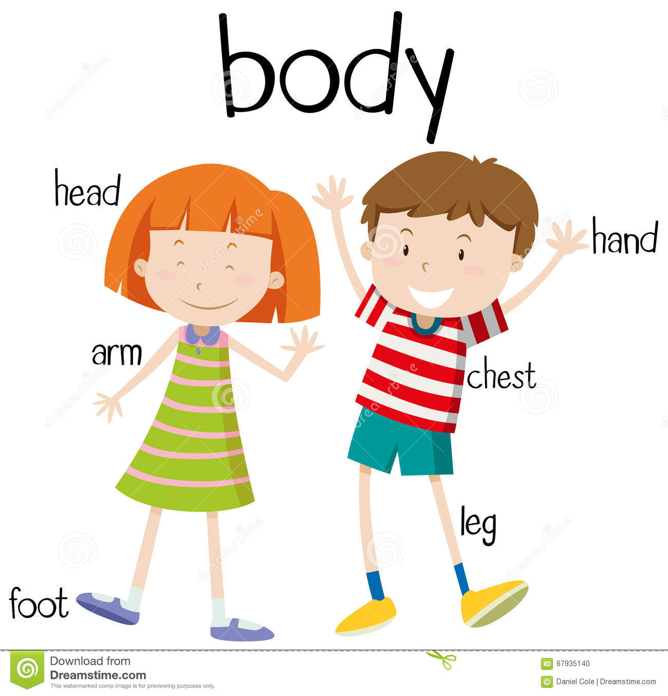 Parts of human body clipart.