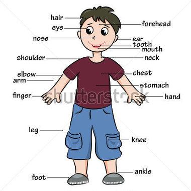 Clipart body parts children.