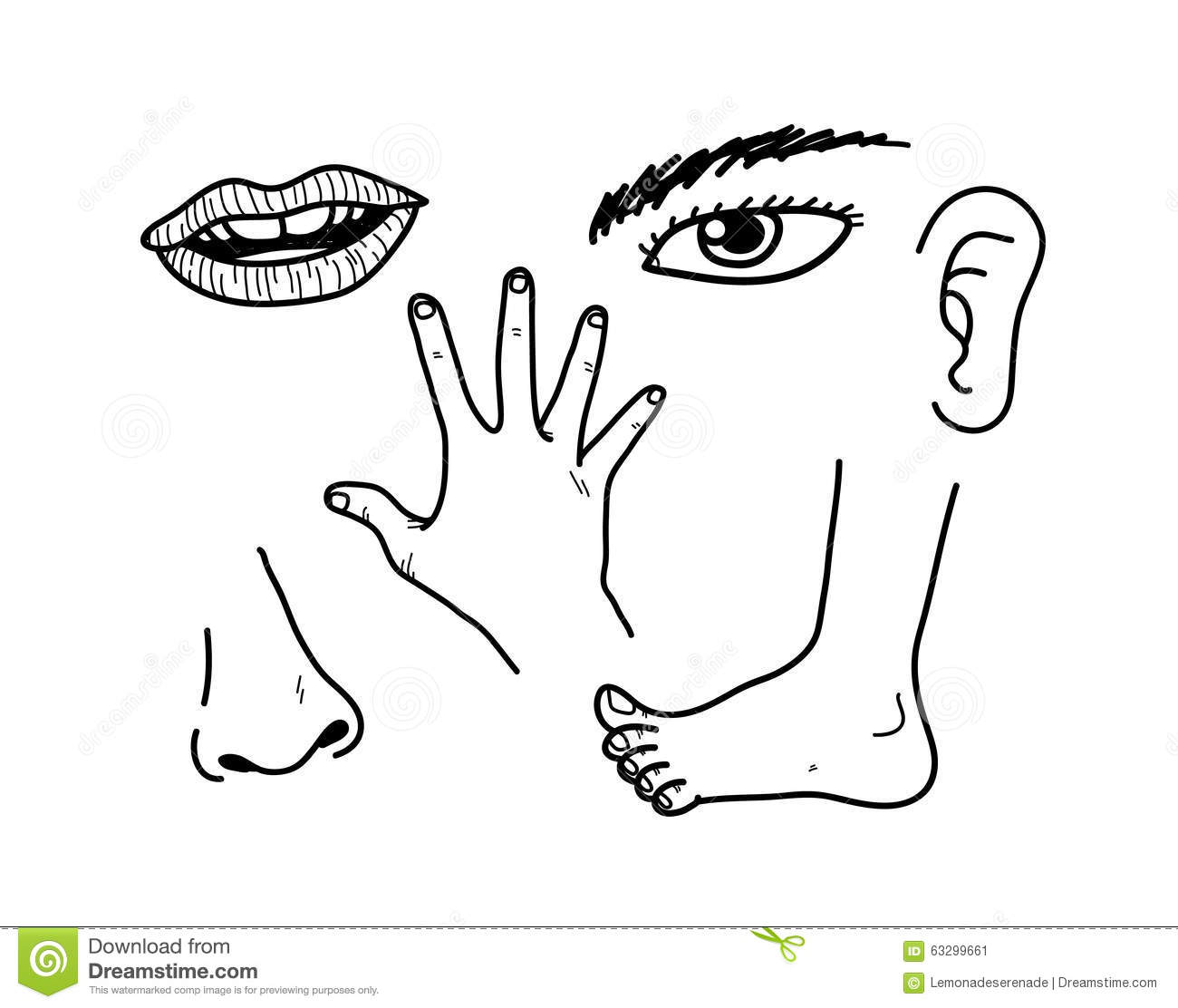 928 Body Parts free clipart.