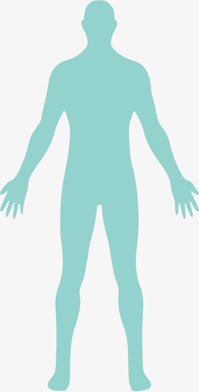 Body Png & Free Body.png Transparent Ima #380102.