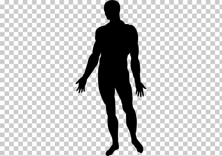 Human body Homo sapiens Female body shape, shape PNG clipart.