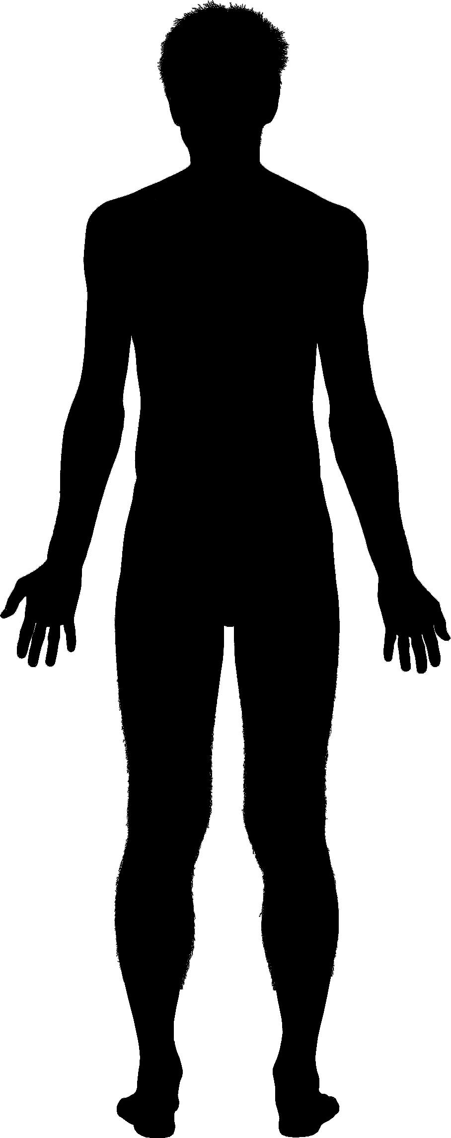 Free Human Body Silhouette, Download Free Clip Art, Free.
