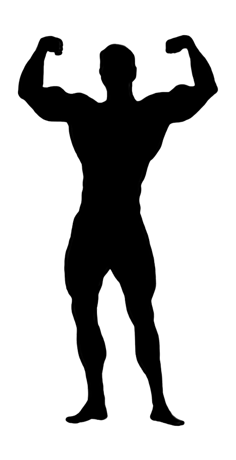 Female bodybuilding Clip art.