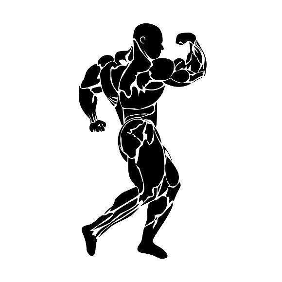 bodybuilding, vector Graphics bodybuilding, vector by.