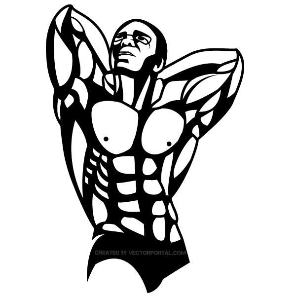Bodybuilder Vector Art.