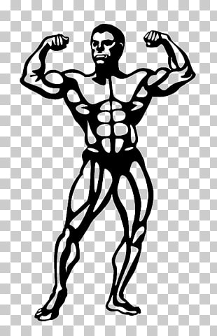 59 Natural bodybuilding PNG cliparts for free download.