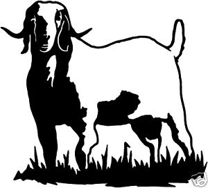 1000+ images about Goats/Chevon on Pinterest.