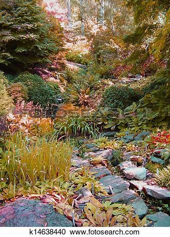 Stock Photography of Bog garden k14638440.