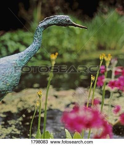 Stock Photo of Bog Garden, Ardcarrig, Co Galway, Ireland; Heron.