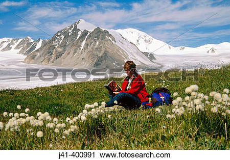 Stock Photography of Reading among bog cotton flower.