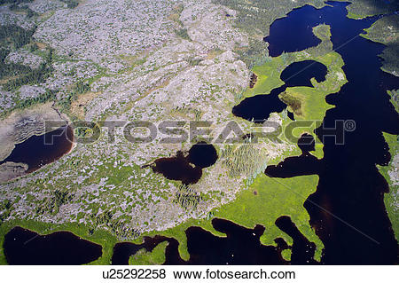 Pictures of Aerial view of the Marshlands and bogs in the.