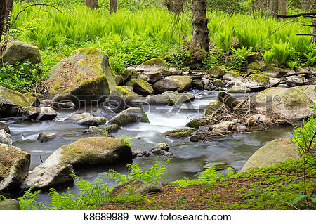 Stock Photograph of small wild river in Bohemian forest k8689989.