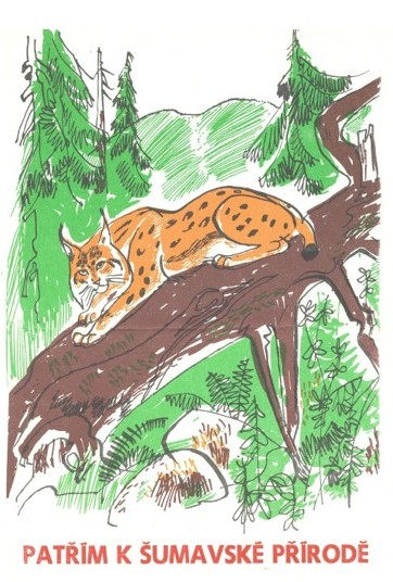 Modern history of the Eurasian lynx in the Bohemian Forest.