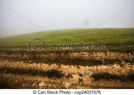Stock Illustrations of Lonely tree on the hill, above the misty.