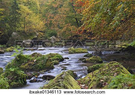 "Stock Photo of ""Edmundova Sout?¢ska gorge, Kamenice river, autumn."