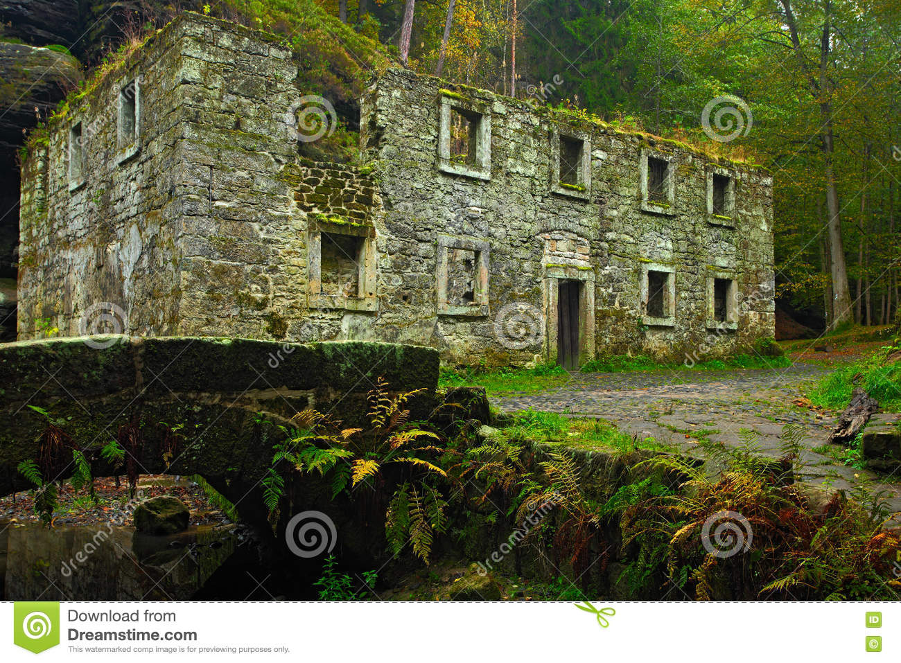 Old Ruin Dolsky Mlyn With Kamenice River, National Park Bohemian.
