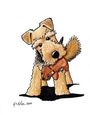 Welsh Terrier With Squirrel Toy.