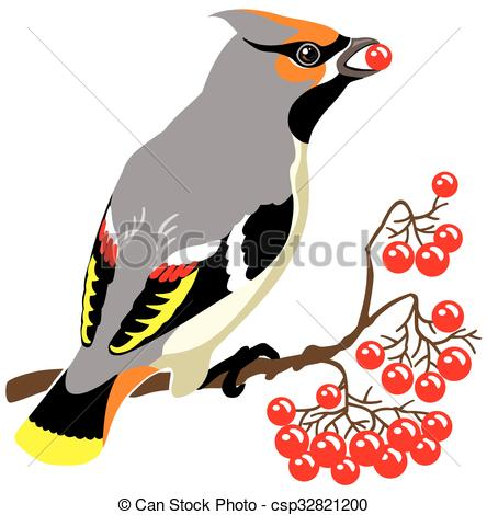 Vector Clipart of bohemian waxwing on a branch of rowan tree.