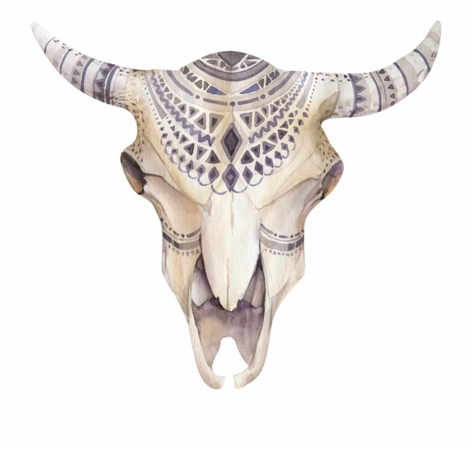 Boho Animal Skull Png.